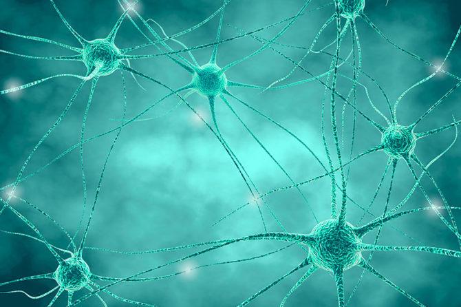 Nuovi orizzonti delle neuroscienze