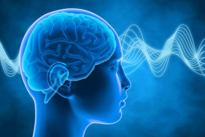 Nuovi orizzonti delle neuroscienze. È il cervello che decide per noi?